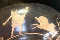 Théseus, mladý hrdina, se chystá udolat obzvláště divokou Krommyonskou svini, 460-450 před n. l. Louvre Museum. Kredit: Bibi Saint-Pol, Wikimedia Commons .