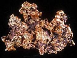 Pride of Australia Nugget (cca 7kg). Zdroj: Museum Victoria