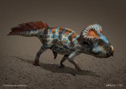Protoceratops byl menší vývojově primitivní rohatý dinosaurus, obývající oblasti dnešního Mongolska v době před 75 až 71 miliony let. Skutečně však můžeme spojovat zkamenělé pozůstatky těchto dinosaurů s počátky legend o Gryfech? Kredit: Antonín Jury, Wikipedie (CC BY-SA 4.0)