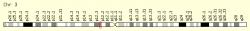 Robo geny 1 a 2 máme na třetím chromozomu. Starají se o správnou migraci neuronů, ale i buněk plicního endotelu. Kredit: GeneCards