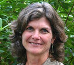 """Amy D. Rosemondová (University of Georgia, Athens): """"Byli jsme z toho v šoku, jak z toků mizelo tlející listí a organická hmota, jak rychle se stávaly """"čisté"""", bez života."""