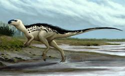 Rekonstrukce přibližného vzezření prvního pojmenovaného českého dinosaura. Burianosaurus augustaibyl středně velký ornitopod, který obýval ostrovní prostředí v okolí dnešní Kutné Hory před 94 miliony let. Kredit: Edyta Felcyn, (CC BY-ND 4.0)