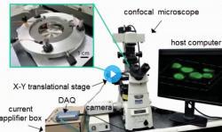 Schéma pinzet instalovaných na konfokálním mikroskopu.  Kredit: Wang et al., Sci. Robot . 4, eaav6180 (2019)