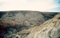 Výchozy souvrství Scollard při řečišti Red Deer River v kanadské Albertě. Právě v těchto vrstvách byl objeven zatímgeologicky nejmladší známý exemplář druhuT. rex. Žil maximálně asi 300 000 let před katastrofou K-Pg.Kredit:Anky-man, Wikipedie (CC BY-SA 3.0)