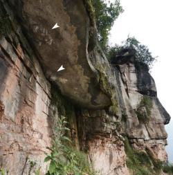 """Skalní převis s vrstvami vápenců a jílovců z období spodní křídy. Šipky označují oba """"otisky"""" dinosauřích stop. V této oblasti jsou známé již po staletí a zavdaly zřejmě podnět k vytvoření legend o kamenných květech. Kredit: Xing et al., Geological Bulletin of China."""