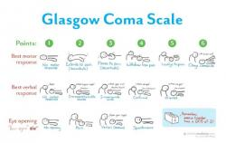Glasgow Coma Scale. Kredit: Sketchy Medicine Shop