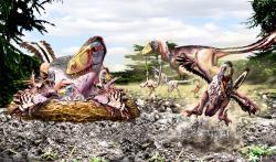 O hnízdním chování a péči o mláďata u dromeosauridních teropodů máme jen velmi málo informací. O to větší pozornost byste museli této kritické fázi realizace vašeho parku věnovat. První úspěšně odchovaní jedinci by přesto mohli přijít až po mnoha tisícovkách neúspěšných pokusů… Kredit: Luis V. Rey, převzato se svolením z jeho blogu.