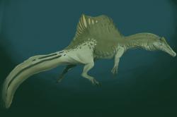 Paleoekologická rekonstrukce spinosaura v jednom z jeho přirozených životních prostředí – pod hladinou vody. Spinosauři byli pravděpodobně aktivními lovci vodních obratlovců v mělkých vodách nedaleko pobřeží. Je pravděpodobné, že se i přes své vysoce vyvinuté adaptace pro semiakvatický způsob života obvykle nepouštěli na otevřené moře. Kredit: Gustavo Monroy-Becerril; Wikipedie (CC-BY 4.0)