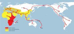 Jedno až šest procent genů moderních euroasijských lidí je dědictvím z dávné minulosti po intimním kontaktu s dnes již vymřelými hominidy.