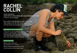 """Rachel Collinová, vedoucí výzkumného olektivu: """"Měl by to být vzájemný kontakt a nikoli chemické signály uvolňované do okolí, co u Crepidula marginalis rozhoduje o změně pohlaví."""" Kredit: STRI http://www.stri.si.edu/english/scientific_staff/staff_scientist/scientist.php?id=4"""