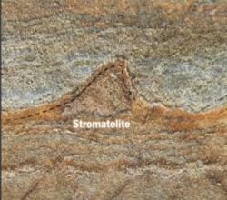 """A to je jeden z těch """"kopečků"""", pozůstatků života z doby před 3,7 miliardami let. Na celou skupinku stromatolitů, jak ji zveřejnil časopis Nature pod autorstvím Laure Gauthiez z The Australian National University se lze podívat například zde http://phys.org/news/2016-08-scientists-billion-year-old-fossil-oldest.html"""