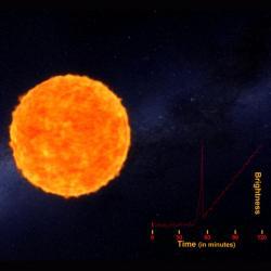 Supernova před explozí. Kredit: ANU.