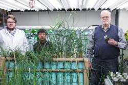 """Long Zhangův """"přenosový"""" tým s  modifikovanou juvenilní šplhavnicí. Zleva: Ryan Routsong, Long Zhang, Stuart Strand. Kredit: Mark Stone/University of Washington, Seattle."""