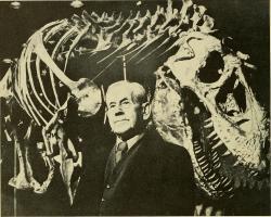 Holotyp druhu Daspletosaurus torosus se svým objevitelem, paleontologem Charlesem Mortramem Sternbergem (1885-1981). Sternberg odkryl první známé fosilie daspletosaura v roce 1921 nedaleko dnes již opuštěného města Steveville v jihovýchodní Albertě. Až do roku 1970 byl však tento exemplář považován za zástupce rodu Gorgosaurus. Kredit: Kniha The Canadian field-naturalist (1982); Internet Archive Book Images, Wikipedie a Flickr (volné dílo)