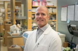 Dr. S. Thomas Carmichael, profesor neurologie, vedoucí výzkumného kolektivu a prozatímní ředitel Centra regenerace Eli a Edythe. Kredit: UCLA (Kalifornská univerzita v Los Angeles).