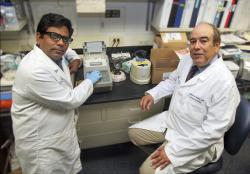 Carlos M. Isales a Sadanand Fulzele – první autor stiudie o vlivu mikroRNA na virulenci COVID-19... . (Kredit: Phil Jones,Univerzita Augusta)