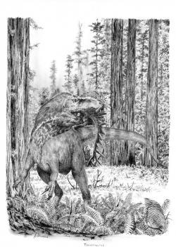 Výtvarná rekonstrukce přibližného vzezření rodu Torvosaurus, obřího dravého dinosaura z období pozdní jury. Podle jedné aktuální studie mohl být původce velkých zubů ze souvrství Tendaguru právě zástupcem tohoto rodu. Pravděpodobně se tak jednalo o jednoho z největších známých jurských teropodů. Kredit: Vladimír Rimbala, ilustrace ke knize autora webu Pravěcí vládci Evropy.