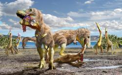 """Přibližná představa o vzezření možného nového tyranosaurida, blízce příbuzného druhu T. rex. Dnes víme, že geografické rozšíření tohoto teropoda bylo značné a zasahovalo od Britské Kolumbie na severu až po Mexiko na jihu. Zde dva jedinci hodují na těle menšího hadrosaurida (""""Sabinosaurus coahuilae""""?; přezdívka """"Sabinosaurio""""), zatímco čtveřice azdarchidních ptakoještěrů rodu Quetzalcoatlus čeká na svoji příležitost přiživit se na mršině. Kredit: Luis V. Rey, převzato se svolením z jeho blogu."""