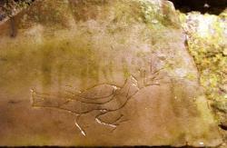 Holubice s ratolestí. Domitilliny katakomby v Římě. Kredit: Dnalor 01, Wikimedia Commons.