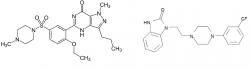 Sidenafil a flibanserin (modrá a růžová viagra)