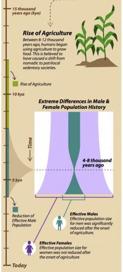 V době před čtyřmi až osmi tisíci lety počet mužů v reprodukci nebezpečně klesl, zatímco počet žen dál utěšeně rostl.   Kredit: Sabine Deviche