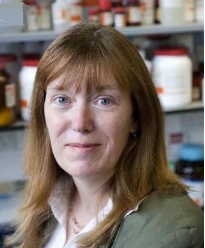 Profesorka Sarah Gilbertová spoluzakladatelka společnosti Vaccitech. Tato společnost, ve spolupráci s Oxfordskou universitou vyvinula univerzální vakcínu, jejíž účinnost prověří britští dobrovolníci. Kredit: Oxford Univ.