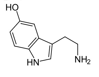 Serotonin. Kredit: NEUROtiker / Wikimedia Commons.