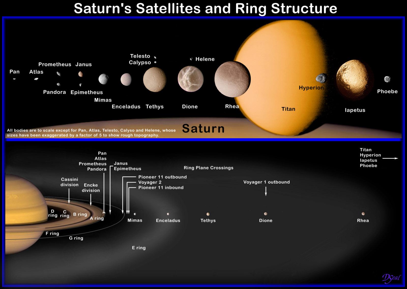 NahoĹ™e srovnánĂ velikosti hlavnĂch SaturnovĂ˝ch mÄ›sĂcĹŻ seĹ™azenĂ˝ch dle jejich vzdálenosti od Saturnu. RelativnĂ velikosti jsou skuteÄŤnĂ© aĹľ na malĂ© mÄ›sĂce Pan, Atlas, Calypso, Telesto a Helene, kterĂ© byly pÄ›tinásobnÄ› zvÄ›tšeny kvĹ