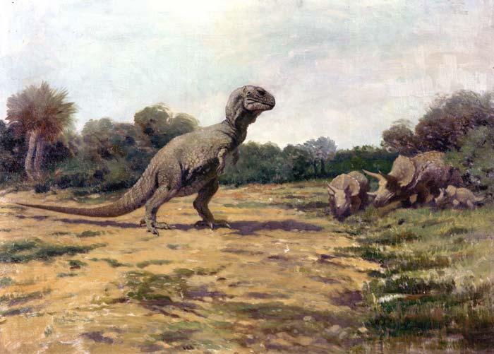 Vrátíme se při rekonstrukcích tyranosaurů o celé století zpět, až do doby amerického výtvarníka Charlese R. Knighta? To rozhodně nikoliv, až tak daleko nás nová studie určitě nezavádí. Na druhou stranu je ale zřejmé, že Tyrannosaurus rex nebyl ani bo