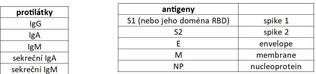 Různé třídy protilátek mohou reagovat proti různým antigenům SARS COV2.
