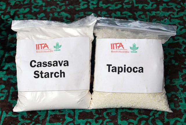 I u nás lze koupit potraviny z podzemních hlíz manioku též známého jako tapiok nebo kasava. Otrava kyanidem z dovážených produktů nehrozí. Přesto je nemá moc smysl kupovat. Mouka ani škrob z obrázku nejsou nutričně zajímavé nebo unikátní suroviny. Kr