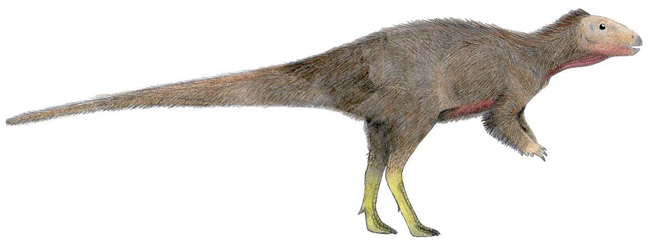 Přibližné vzezření ornitopoda druhu Trinisaura santamartaensis, vědecky popsaného v roce 2013. Morrosaurus vypadal zřejmě velmi podobně, jde o dva blízce příbuzné druhy. Oba dinosauři obývali Antarktidu v období svrchní křídy, kdy