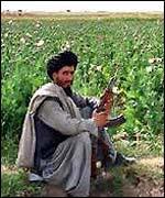 Afgánec